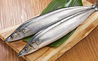 秋刀鱼防动脉硬化!青背鱼通血管 鱼罐头更补钙