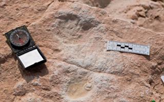 沙特沙漠地区发现12万年前人类脚印