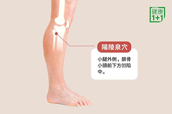 消腿部水肿的穴位:阳陵泉穴。(健康1+1/大纪元)