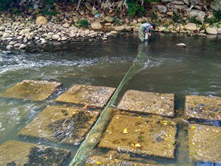 顾及河川生态特地设计悬空式拦除网,考量河面垃圾多以漂浮漫流方式,故拦除网不触底,兼顾环境保护及生态环境。