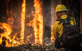 【名家专栏】糟糕的政策助燃了美国森林大火