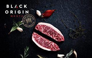 世上最美味牛肉 新西兰土地上的日本和牛