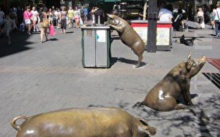 阿德莱德标志雕塑 兰道购物街四铜猪遭涂鸦