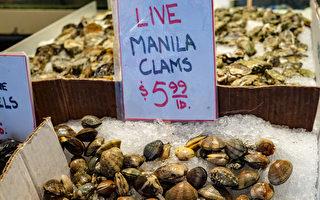 带毒蛤蜊召回 可致麻痹或丧生