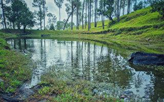 印男花30年獨力開鑿3公里長河渠 引水入村