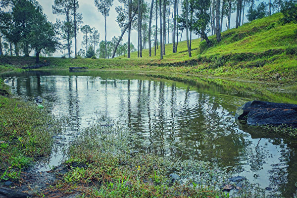 印男花30年独力开凿3公里长河渠 引水入村