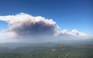火災史無前例 美國森林管理局關閉加州所有的國家森林