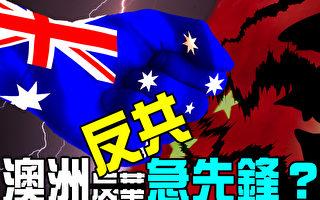 【澳洲新聞熱點10.15】中共稱澳洲「帶頭反華」 澳參議員被「特別感謝」