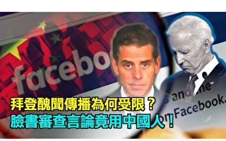 【西岸觀察】6中國籍工程師替臉書做言論審查