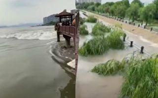 【视频】钱塘江现近3年来最大涌潮