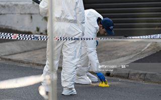 悉尼南區女被刺身亡案 男友被控謀殺