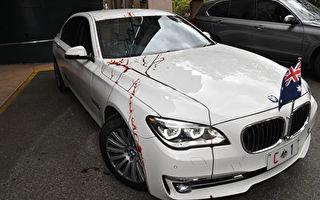 澳洲总理座驾遭抗议者泼红漆 一女子被起诉