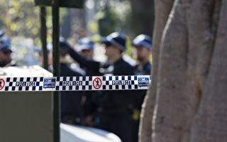 悉尼南区一女被刺身亡 一男子被捕协助调查