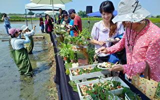 生态厨师田间料理 鲜食鲜吃推永续饮食