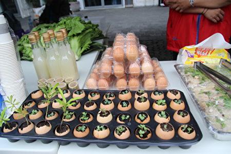 台东部落健康创意食材。