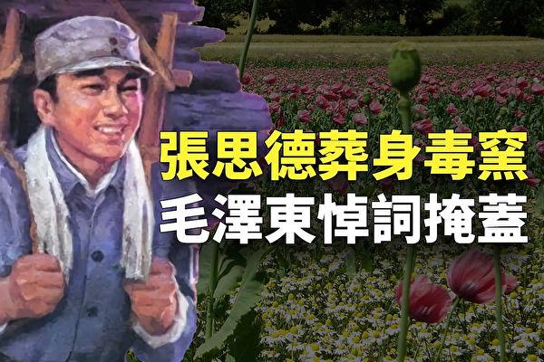 【欺世大观】毛泽东警卫员张思德怎么死的?