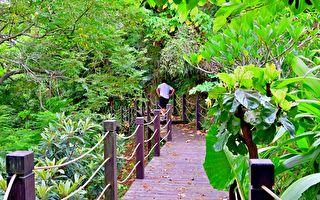 整建石岡挑物古道 打造優質步道環境