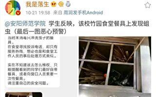 河南高校食堂餐具現蠕動蛆蟲 學生:噁心