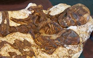 母愛亘古不變 台中出土五千年前母子相擁遺骨