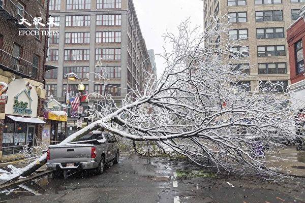 【视频】波士顿10月降雪量创纪录 华埠树倒封路