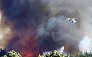 南岛再爆大火  田园风光被焚毁