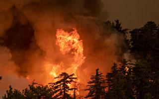 野火疫情交叠 加州经济恐难短期复苏