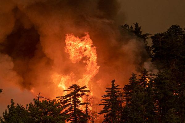野火疫情交疊 加州經濟恐難短期復甦