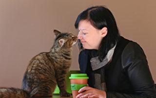 研究:慢慢眯起眼睛 可与猫咪增进感情交流