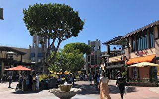 加入商區 迪士尼冒險樂園門廊店11月開放