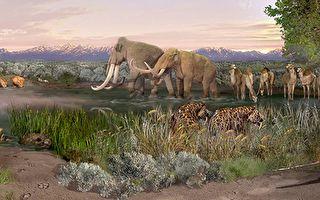 美公园现远古人类足迹 科学家还原背后故事