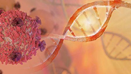 验血中微生物可知癌 癌症细菌论卷土重来