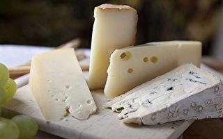研究發現:奶酪的臭味是微生物在對話