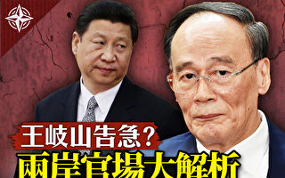 【十字路口】两岸官场大解析 王岐山告急?