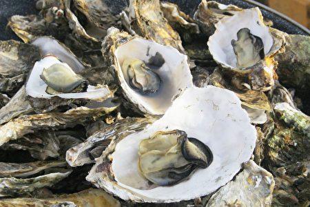 東石鮮蚵口感滑溜細嫩,有著嘉義飽滿陽光與蔚藍大海的獨特新鮮美味。