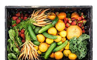 墨尔本慈善机构获万元资金 救济食物将变换花样