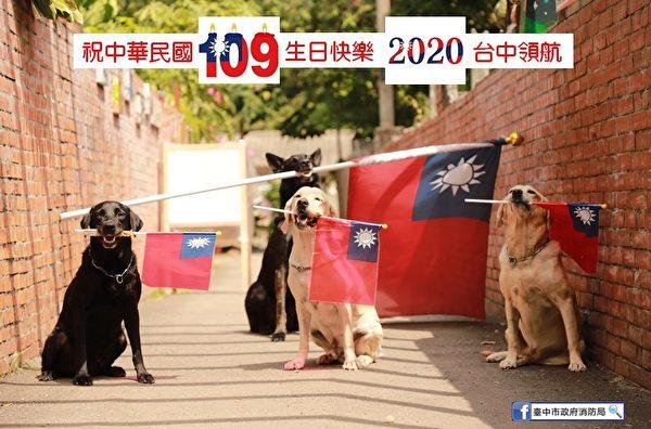 台中市政府消防局搜救犬大队的搜救犬挥舞国旗,参加双十国庆的升旗典礼。(台中市政府消防局)