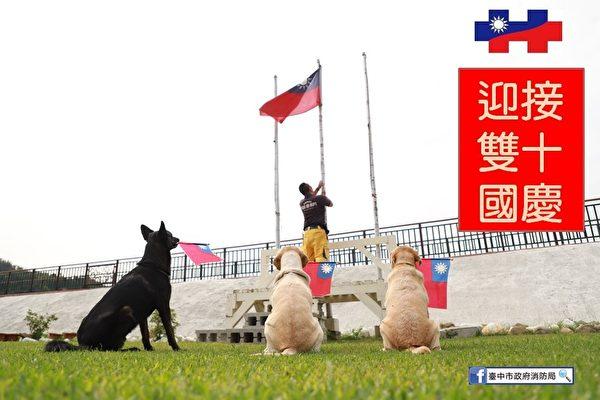 好疗愈! 台中搜救犬挥舞国旗参加升旗典礼