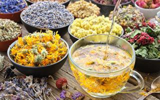 16種「輕養生」花草茶 你喝對了嗎?