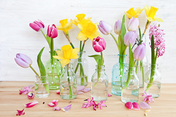 杂物, 椅子, 卧房, 盆栽, 鞋盒, 信件, 花瓶, 文具, 玻璃罐