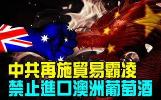 【澳洲新聞熱點11.4】Aldi聖誕節促銷產品沒到貨