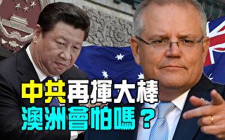 【澳洲新闻热点】中共再挥大棒  澳洲会怕吗?
