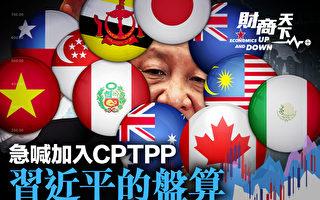 【財商天下】內循環陷死循環 習急喊加入CPTPP