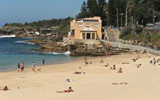 悉尼東區推出新措施 助著名海灘在夏日開放