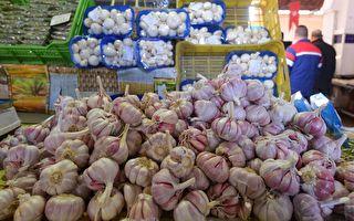 澳洲本地产大蒜自给自足 不再依赖进口