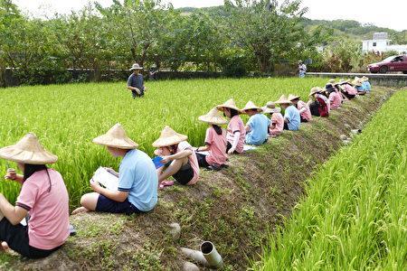 準備下田的學生先靜靜地坐在田埂上,讓雙腳泡進冰涼的田水裡,感受水稻田裡的自然氛圍。