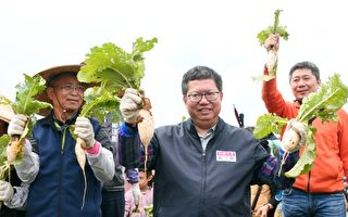 2020桃园花彩节大园接续登场 体验在地农事乐趣
