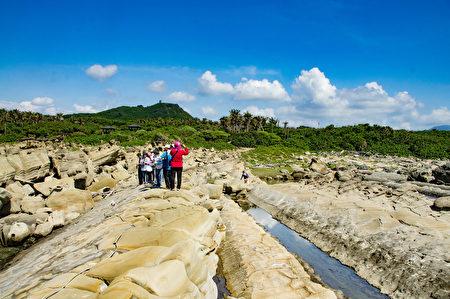 台東小野柳地質導覽。