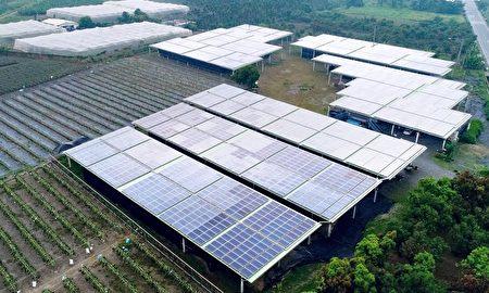 2020碳揭露計畫,全球A等級指標城市的88個名單中,屏東縣是台灣六都以外,唯一獲得A等級「具領導力」城市的殊榮。圖為:泰陽菇兒院。