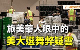 【一线采访视频版】旅美华人眼中的美大选舞弊