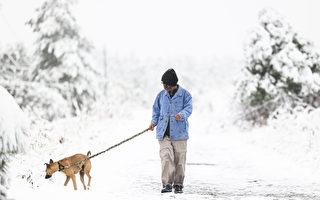 预测今冬较去年更冷  民用天然气支出将增加
